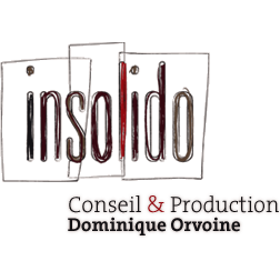 Insolido - Dominique Orvoine